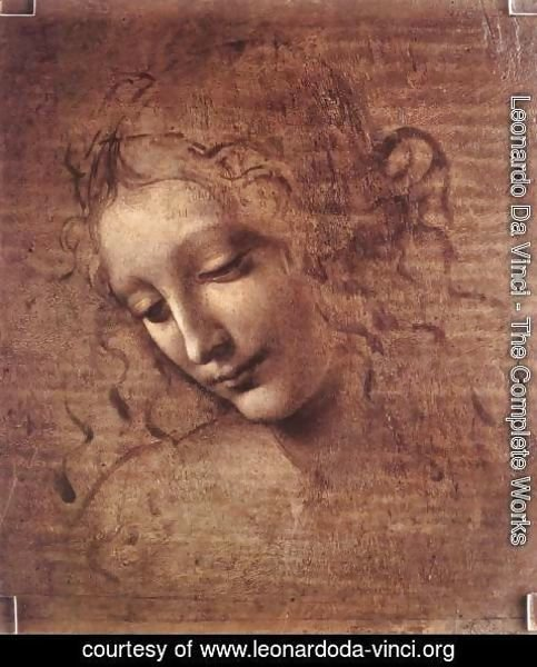Leonardo Da Vinci - Female head (The Lady of the Dishevelled Hair) (or La Scapigliata)