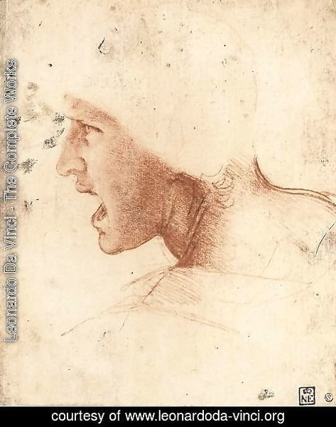 Leonardo Da Vinci - Head of a Warrior (or 'The Red Head')