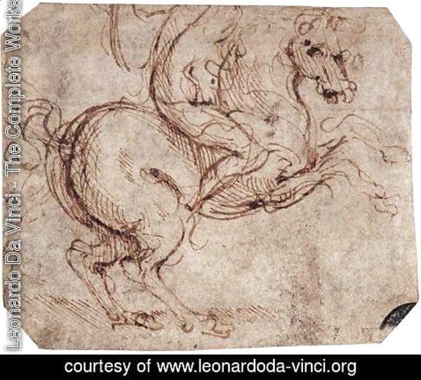Leonardo Da Vinci - The Complete Works - Study of a rider ...