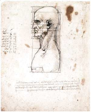 Leonardo Da Vinci - Male head in profile with proportions