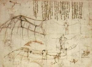Leonardo Da Vinci - fly
