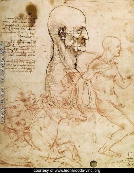 Sketches for The Battle of Anghiari 1504-6