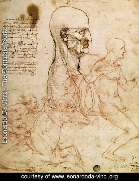 Leonardo Da Vinci - Sketches for The Battle of Anghiari 1504-6