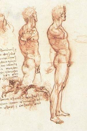 Leonardo Da Vinci - studyof_man