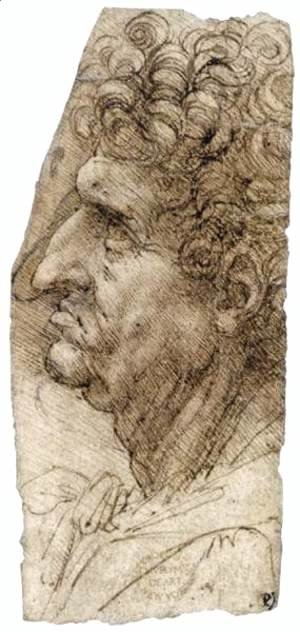 Leonardo Da Vinci - Head of a Man Facing to the Left