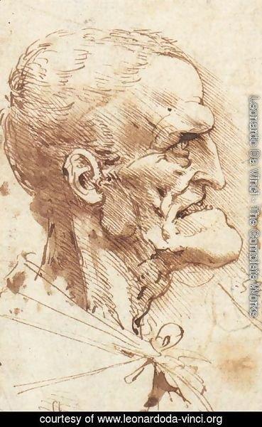 leonardo da vinci the complete works grotesque profile