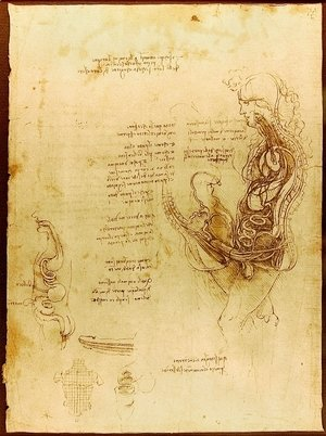 Leonardo Da Vinci - Coition of a Hemisected Man and Woman