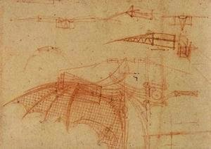 Leonardo Da Vinci - Design for a Flying Machine 2