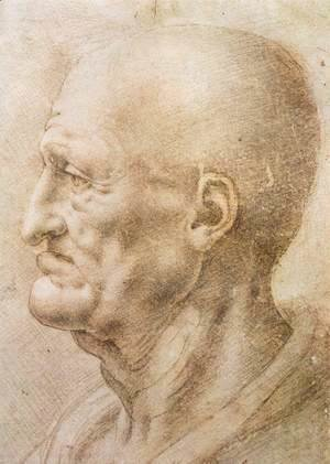 Leonardo Da Vinci - Profile Of An Old Man