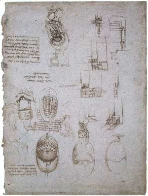 Leonardo Da Vinci - Studies Of The Villa Melzi And Anatomical Study